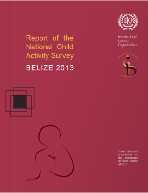 ChildActivitySurveyReport_2013